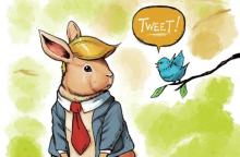 Thump and Tweeter